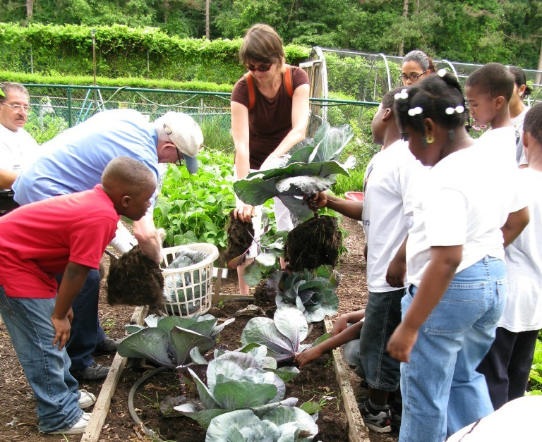 Students-with-UC-Master-Gardeners