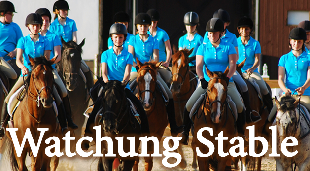 watchung-stable