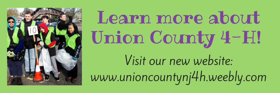 Search Results for: job - County of Union, New Jersey