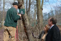 Freeholder Vice Chairman Bruce Bergen, right, and Freeholder Bette Jane Kowalski look on as Master Tree Steward Jerry Petz installs new signage in Echo Lake Park.  The new signs link to a virtual field guide created by The Smithsonian, Columbia University and the University of Maryland, making it possible to learn about many of the trees in Union County's Parks.