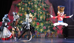 The Union County Board of Chosen Freeholders is proud to bring an abridged one-hour sensory-friendly performance of American Repertory Ballet's Nutcracker to the stage at the Union County Performing Arts Center in Rahway on Sunday, November 22 at 2:00 p.m. Tickets and info at ucpac.org or call the Box Office at 732-499-8226.