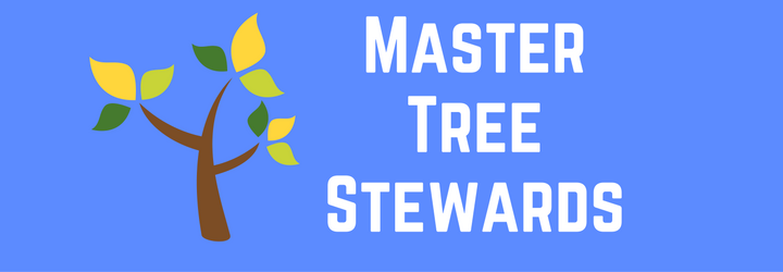 5-master-tree-stewards