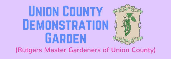 6-union-county-demonstration-garden