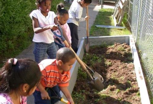 Union County Announces Union County Means Green Community Garden