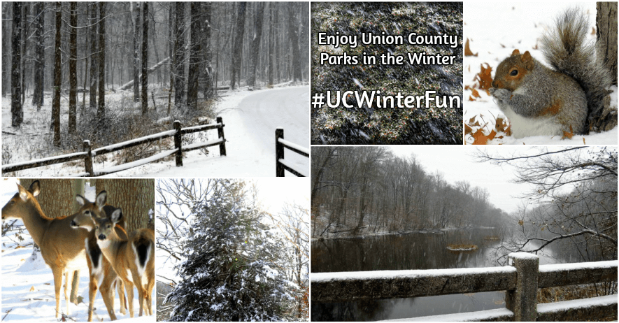 Winter in Union County Parks